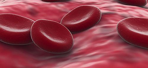 plasma riche en plaquettes pdf